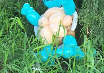 Wild Squirtle